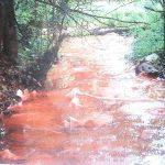 Stream Contamination